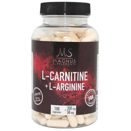 buy l carnitine l arginine magnus supplements