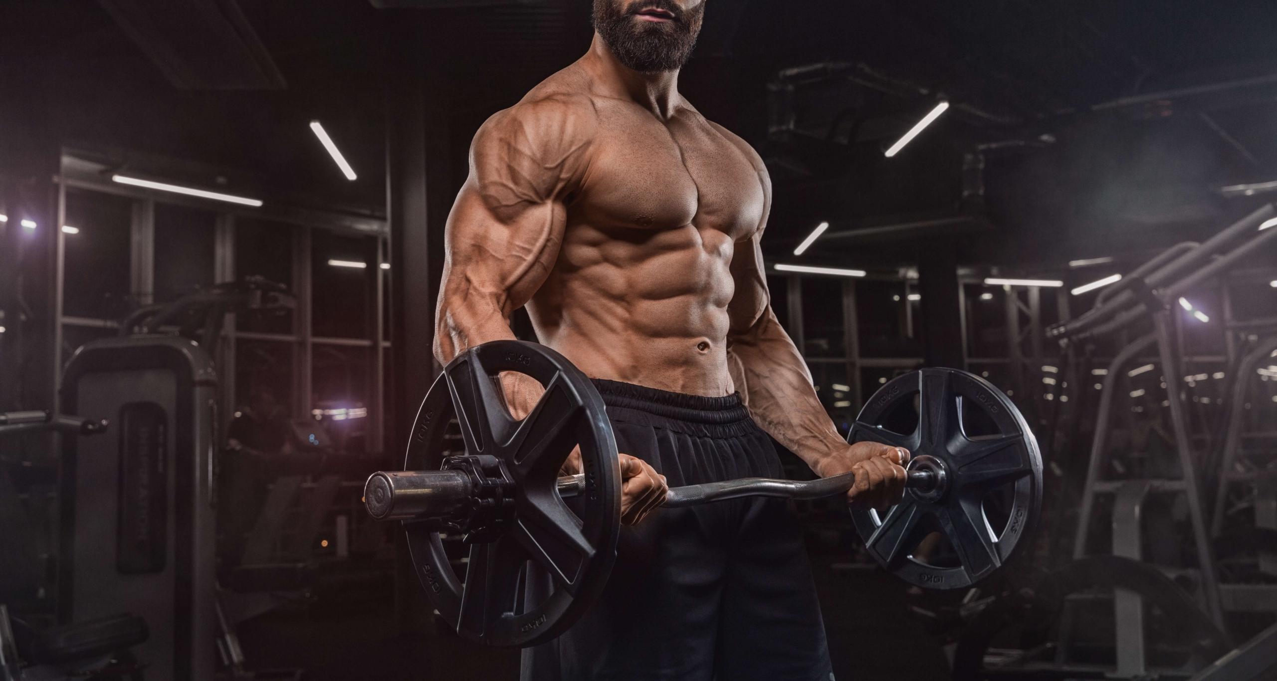 Was sind Testosteron Booster und wie wirken sie? Steigerung des Testosteronspiegels