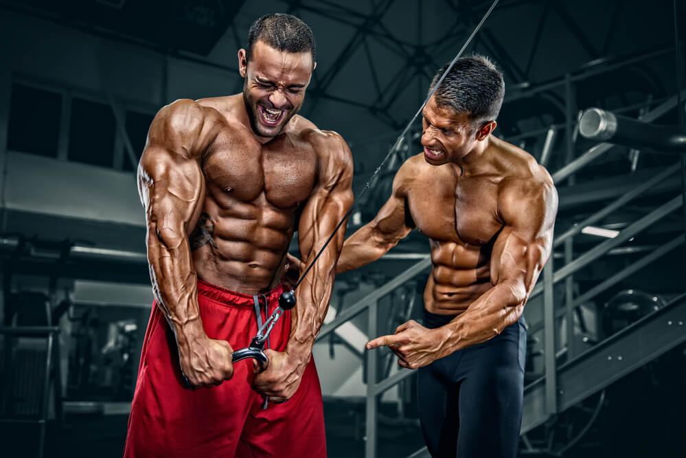 Die richtige Ernährung für die Testosteron Produktion