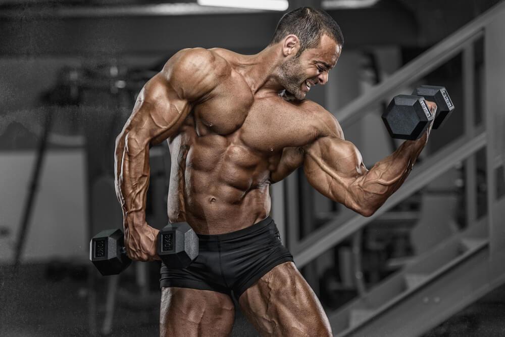 Die richtigen Supplements für Anfänger beim Muskelaufbau-2