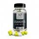 Magnus Pharmaceuticals LIGANDROL (LGD-4033)