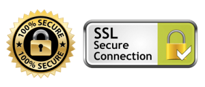 SSL Secure Connection Payment Transaction