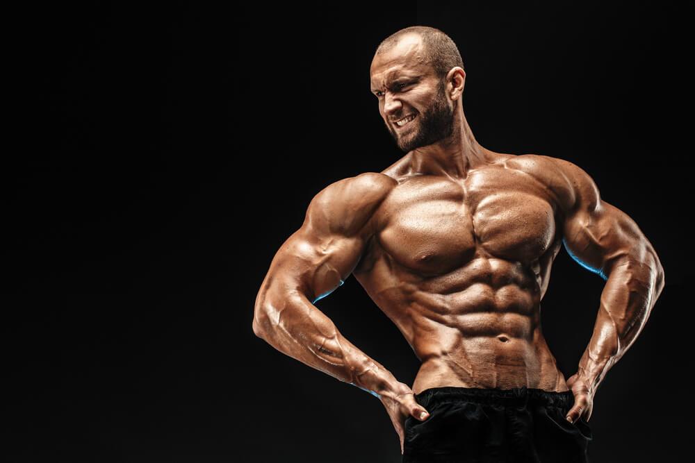Testosteron für Muskelaufbau und Muskelwachstum