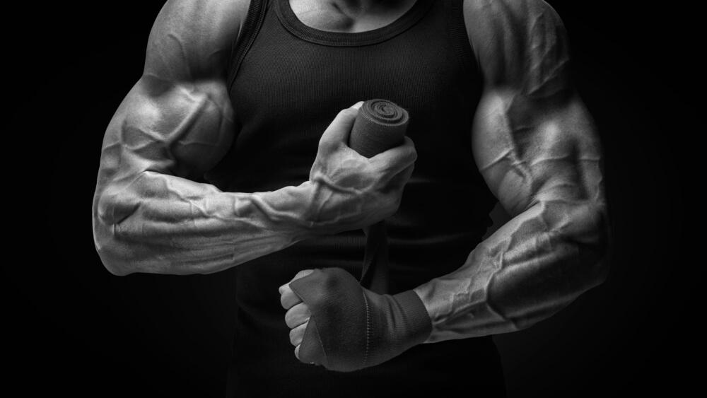 Trainingsbooster Inhaltsstoffe und Zutaten