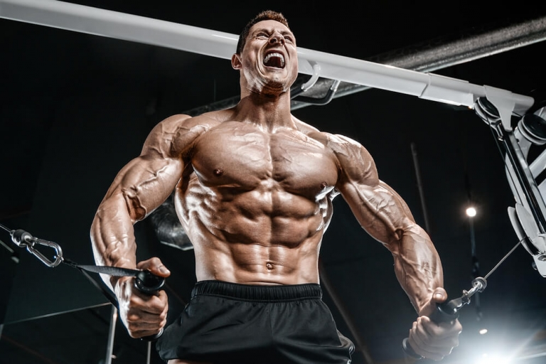 Human Growth Hormone HGH for Muscle Building